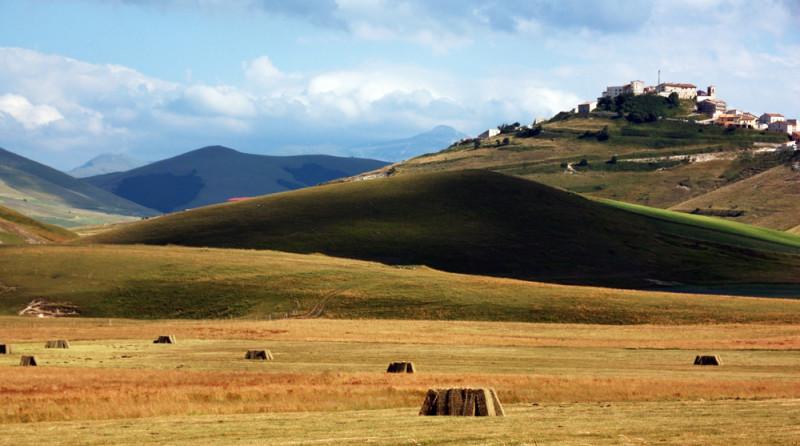 Maggio 2012 – Tatiana Fronzi – Immagini dalla natura